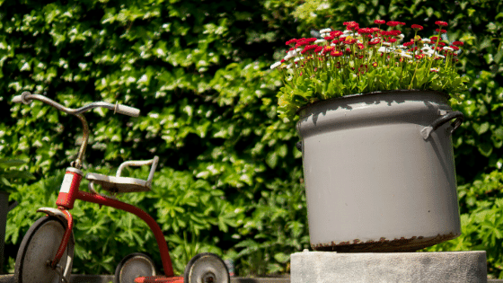 large pots help to create an eco-friendly garden.