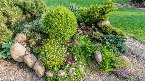 A gravel border around a garden