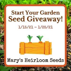 Start Your Seeds GIveaway ad for Edible Food Forest post