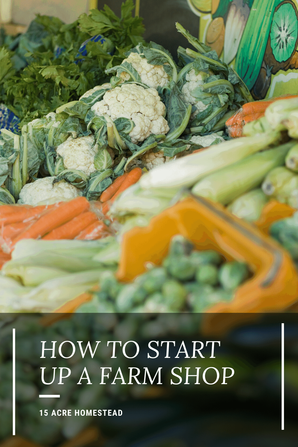Have you ever considered starting your own farm shop? Here are some tips to get you started.