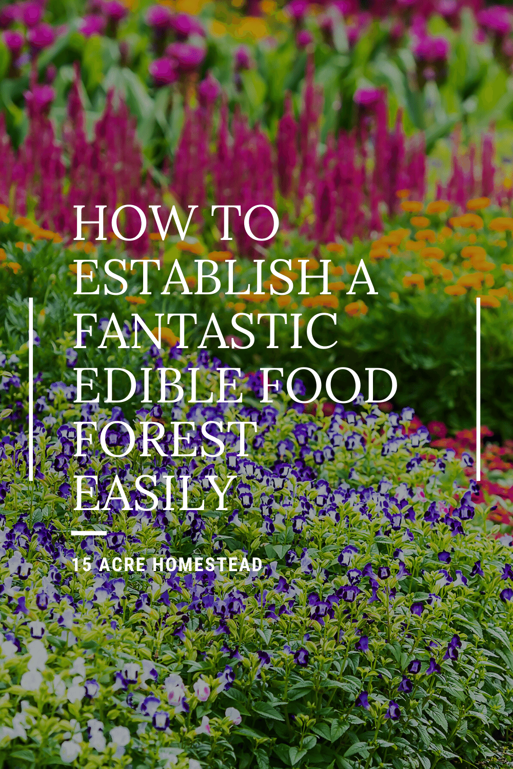 Learn to become more self-reliant by establishing an edible food forest on your homestead. This very detailed post will help you get started quickly.