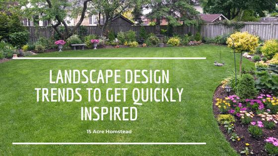 landscape design trends