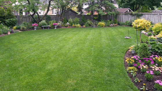 A private backyard for enjoyment.