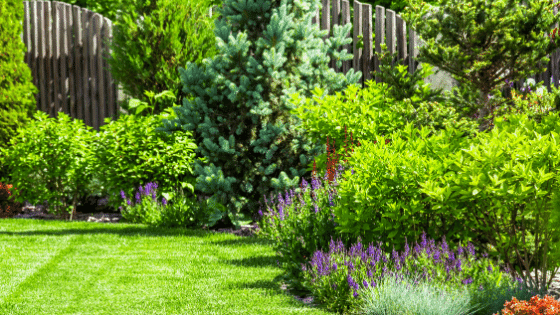 Use larger and smaller trees in your landscape design.