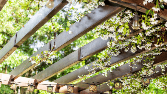 A pergola can add a contemporary approach to your new garden.