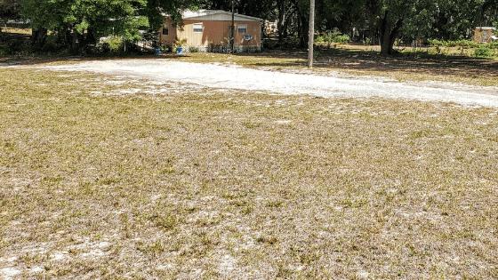 My sandy front yard