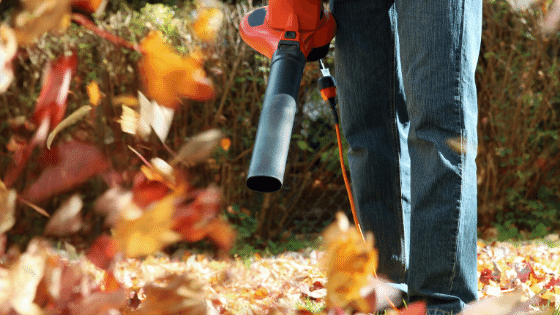 Wear appropriate clothing when using a leaf blower