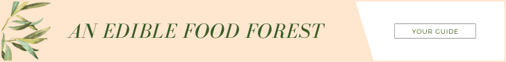 Food Forest Guide Banner