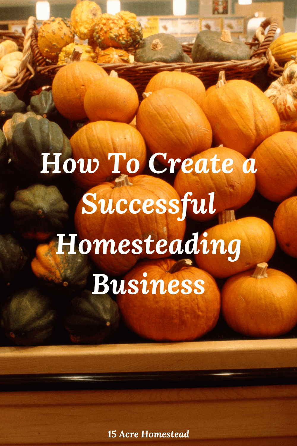 If you are thinking about starting a homesteading business, take these tips and suggestions to mind before you get started.