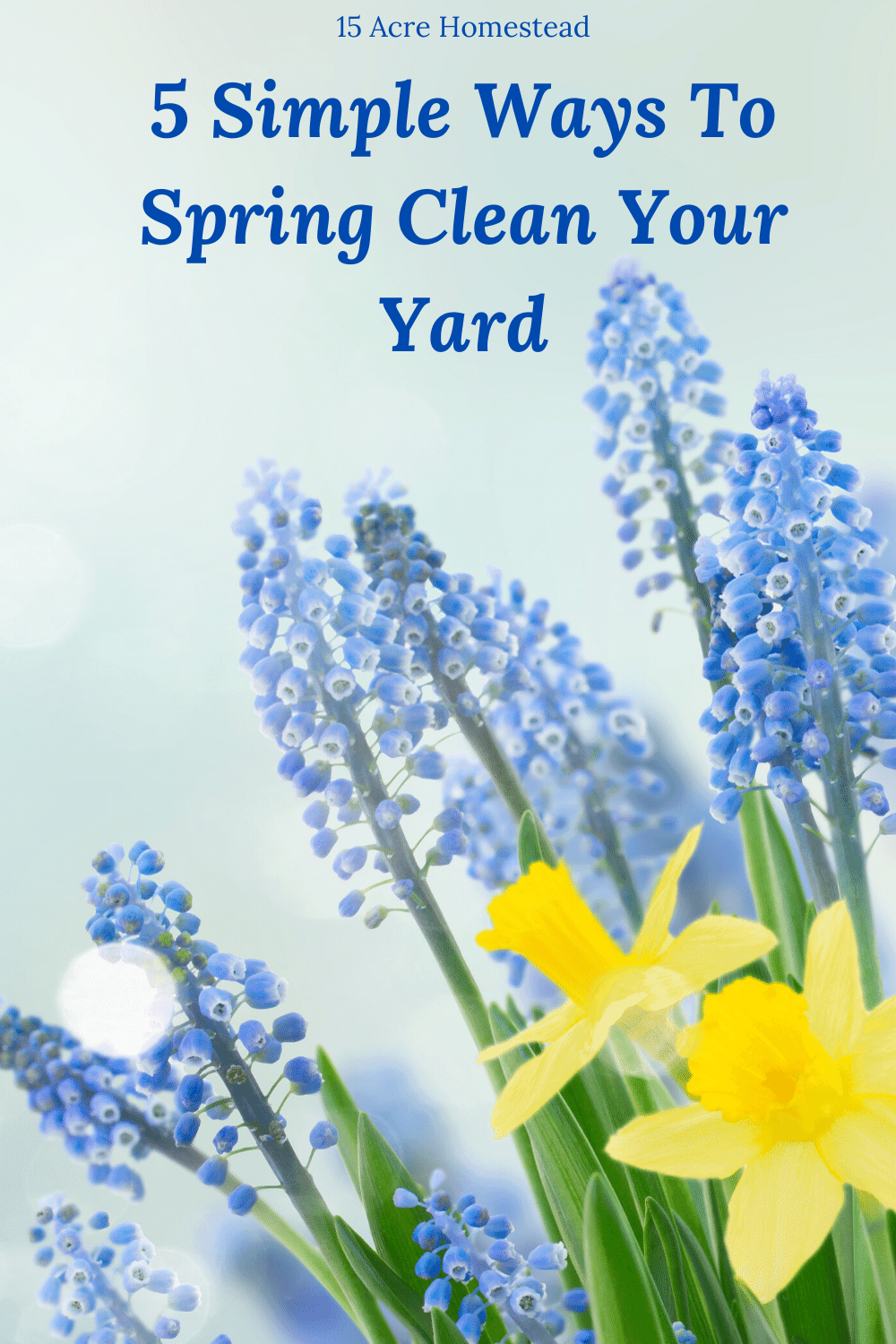 Try these 5 simple tips to spring clean your yard and get ready for the warmer weather on your homestead.