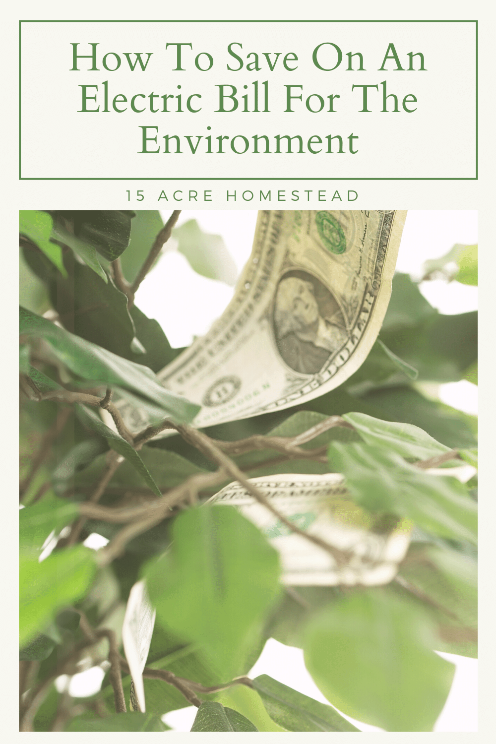 These tips can save the environment and cut back on your electric bill as well.