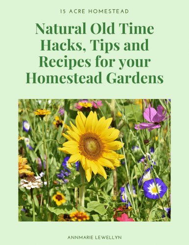 Natural Old Time Hacks Tips and Recipes For Your Homestead Gardens