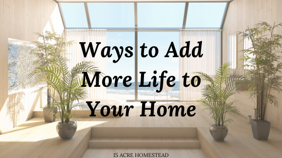 add life to your home