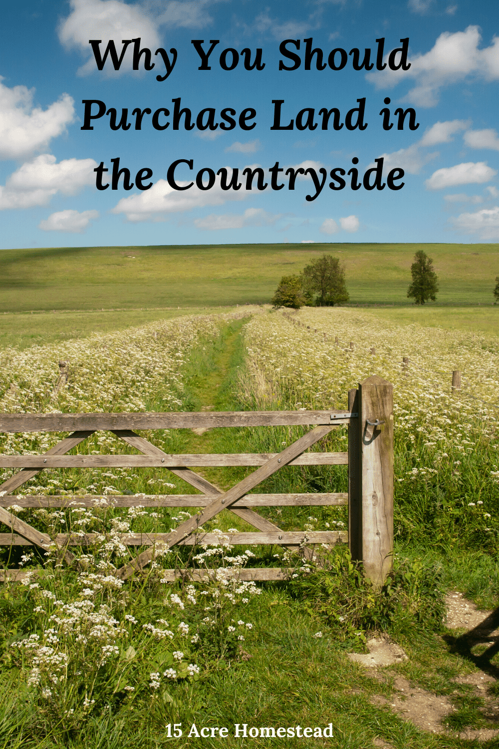 Are you getting ready to look for a new home? Have you considered moving to the countryside? Here are a few reasons why you should.