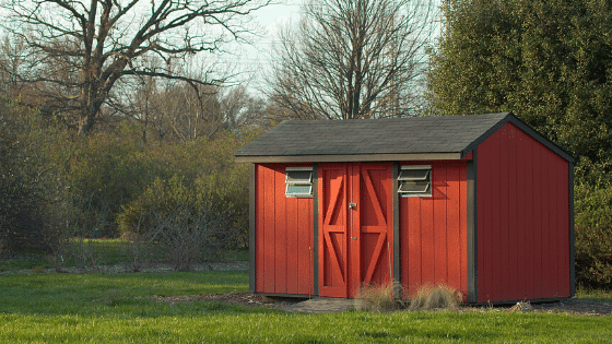 Clear out your yard and backyard shed