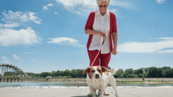 Elderly walking her animal companion