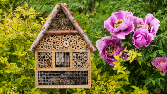 An insect hotel is an excellent way to invite insects to your garden space.