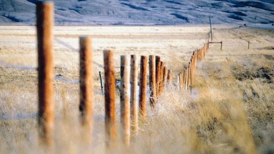 smallholdings fencing
