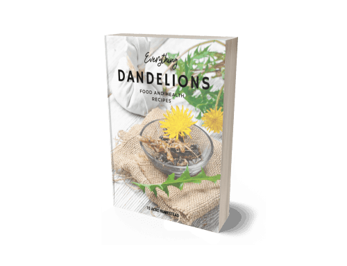 Everything Dandelions Ebook Cover