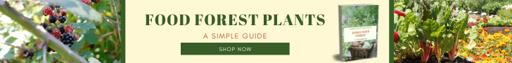 Food Forest Plants Ebook Banner