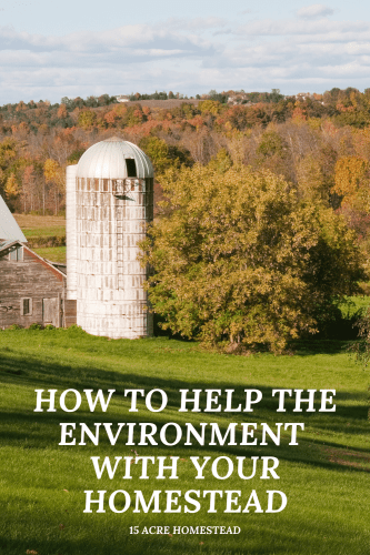Even small changes to your homestead can help the environment, and being greener can also help you to save money too. If you dream of a totally self-reliant lifestyle and living completely off-grid, these suggestions should help you to move a step closer to making that dream a reality.