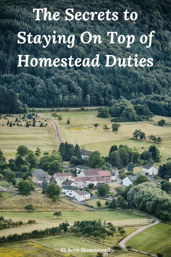 Following these 3 tips will make your homestead duties become easier and less overwhelming!