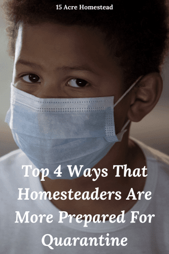 The general population is leaving store shelves empty as they stock up on all kinds of supplies and goods; homesteaders, on the other hand, are not finding themselves in these panicked frenzy-like situations. This post will detail how homesteaders are the most prepared for the COVID-19 quarantine.