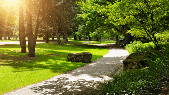A public park may be one of your moving considerations.