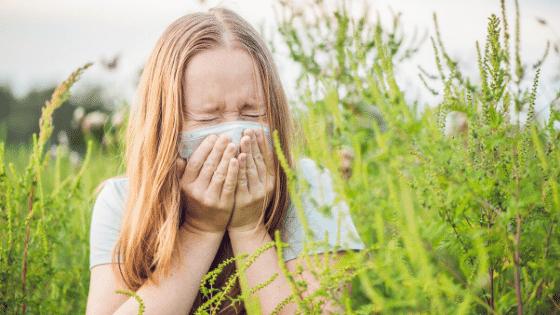 A woman allergic to ragweed