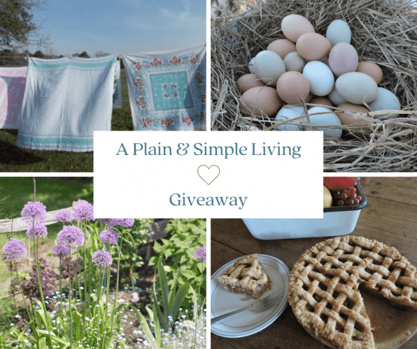 A Plain and Simple Living Giveaway Image