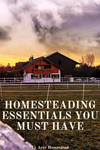 You may be surprised to find out what homesteading essentials you really need to have in place in order for your homestead to be successful. Find out what they are now. A long list of homesteading resources too!