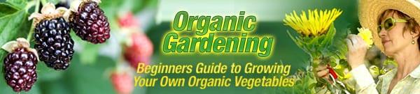 organic gardening e-book