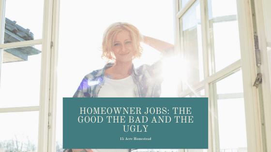 Homeowner jobs