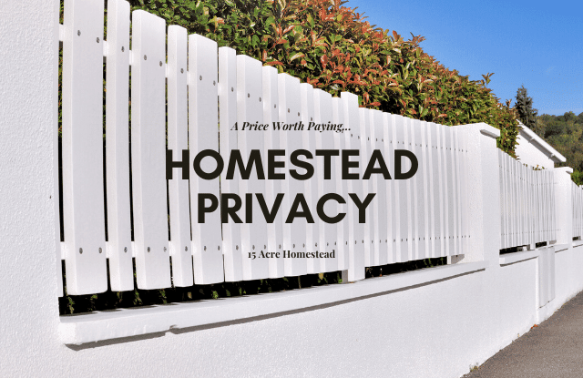 If homestead privacy is important to you, the simple tips in this post should help you achieve a comfortable level of privacy.