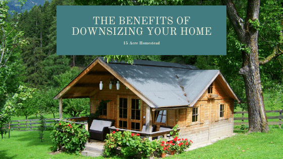 Before you jump at the idea of buying a bigger home, you should really consider the benefits of downsizing your home first.
