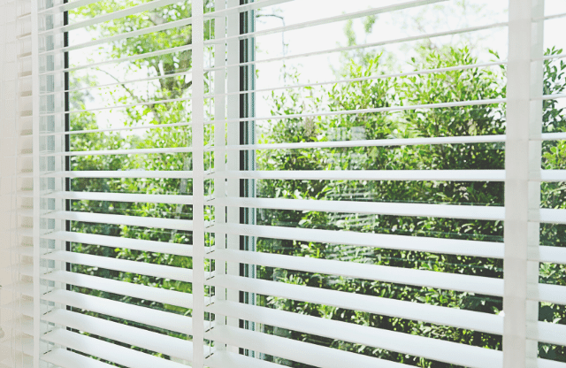 a window blind
