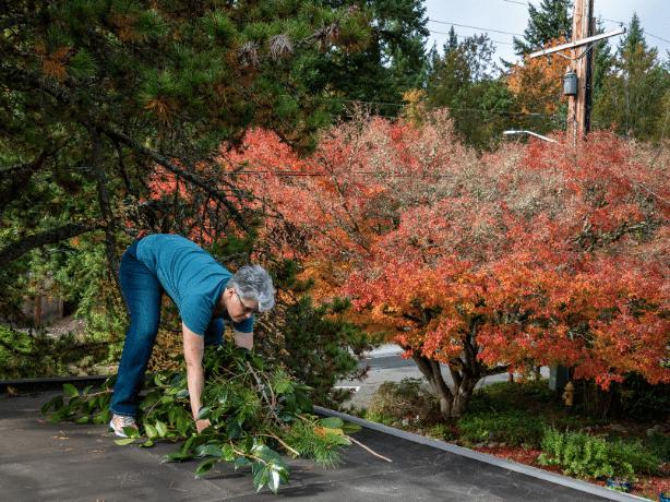 Performing yard cleanup