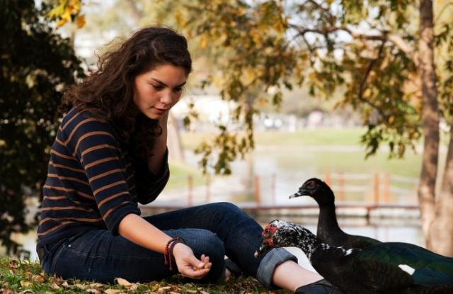 A woman feeding the ducks