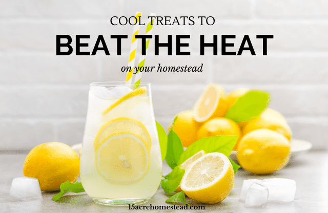 """Beat the heat on your homestead with these """"cooling"""" activities and cool treats you can do at home!"""