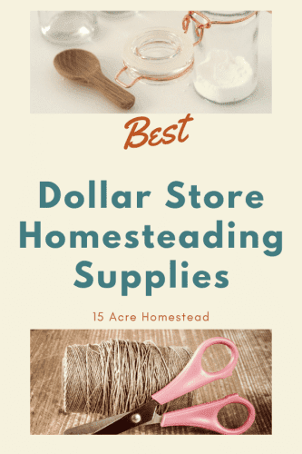 Start saving a lot of money by stocking up on these Dollar Store homesteading supplies today!