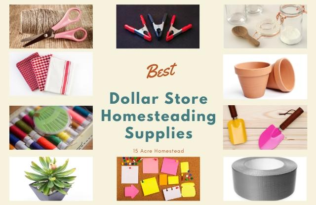 Dollar Store Homesteading Supplies