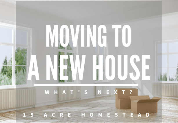 moving to a new house featured image