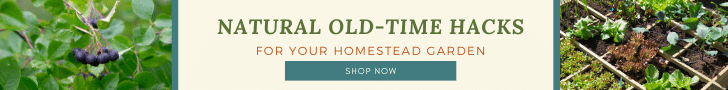 Old Time Hacks E-Book Banner
