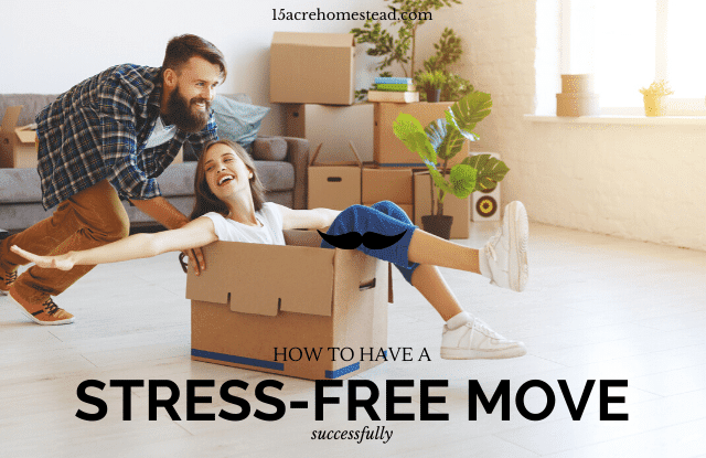 Stress-free move featured image