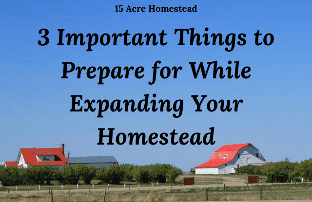 Expanding your Homestead featured image