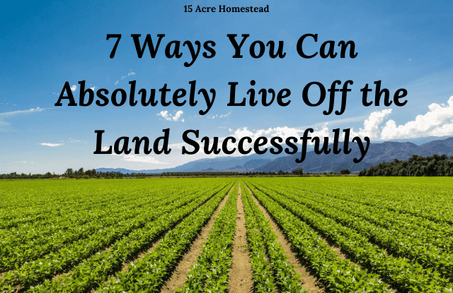 live off the land featured image
