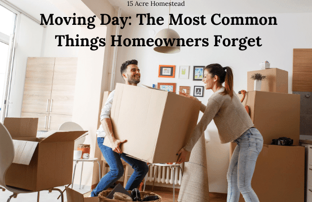 moving day featured image