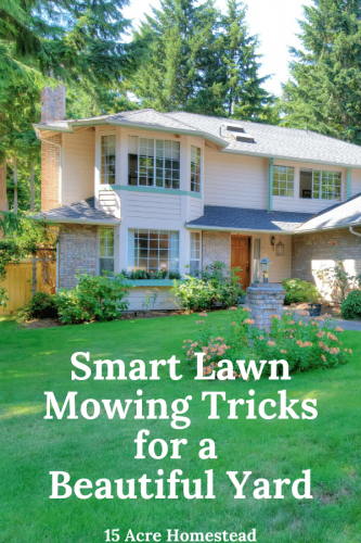 Learn some new smart tricks to having a beautiful yard today!