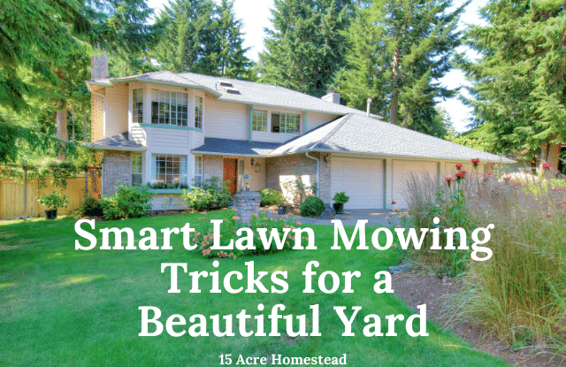 Smart Lawn Mowing Tricks For A Beautiful Yard 15 Acre Homestead