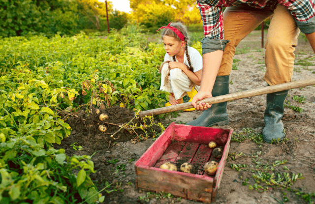 Mom and daughter planting a garden as part of knowing how to live off the land.
